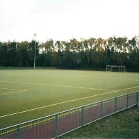 Birch Hill Synthetic pitch rsz.jpg
