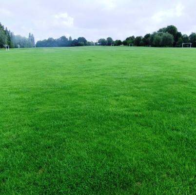 Playing Field.jpg