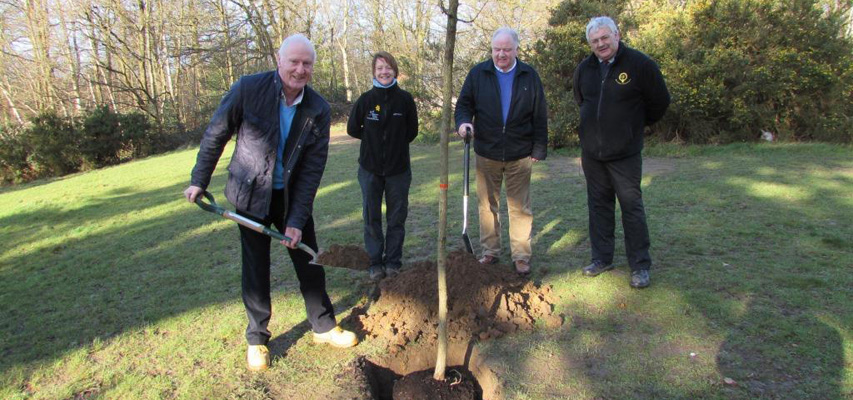 30 new trees planted at North Lake, South Hill Park